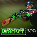 Cricket Bat Challenge