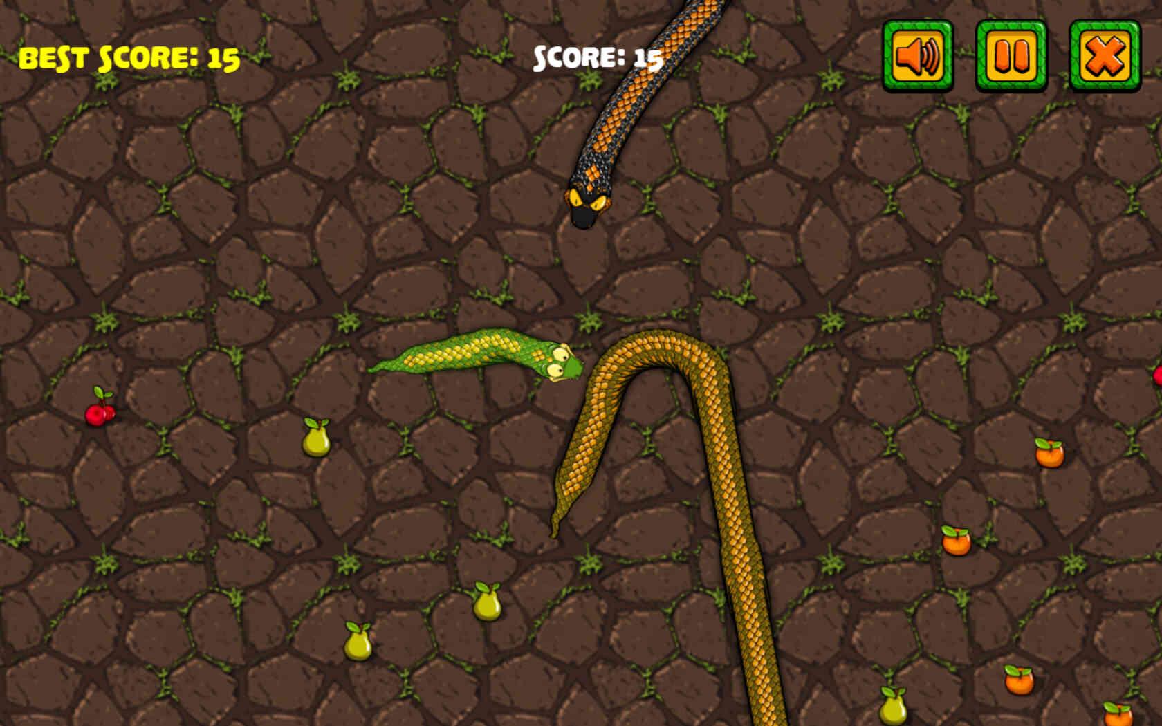 Image Snake Attack